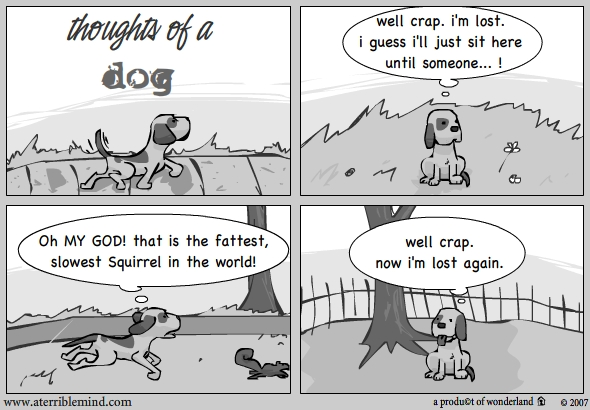 Thoughts of a dog
