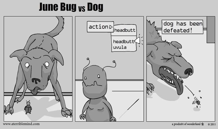 Junebug vs Dog